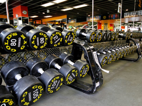 Golds Gym Bhawarkuan Indore